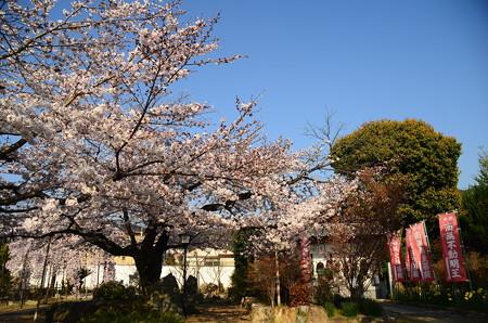 橋寺放生院