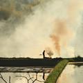 写真: あぜ焼きの景色