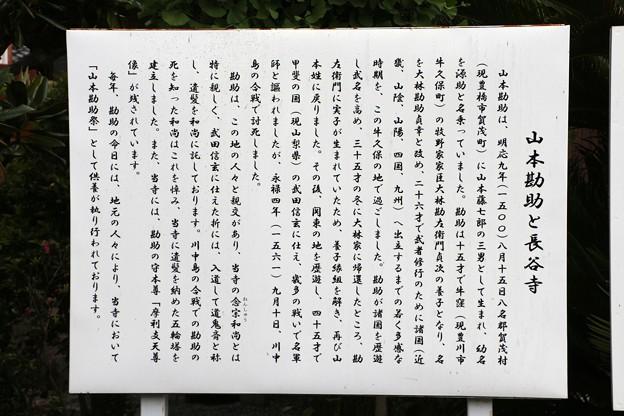 山本勘助と長谷寺説明