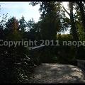 Photos: P2880290