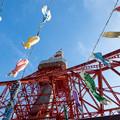 東京タワー 鯉のぼり333匹 Tokyo Tower