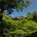 Tofukuji (東福寺) is a large Zen temple in southeastern Kyoto