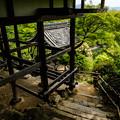 The Senkoji (嵐山 大悲閣 千光寺)