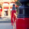 オールドレンズ de 大宮氷川神社