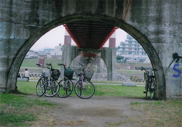 ?玉手橋(フィルムNewFm2 Pro400)