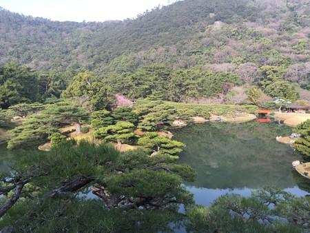 20150326栗林公園(1)