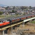 DD51-842+12系客車新潟車+C61-20 快速DL碓氷物語号