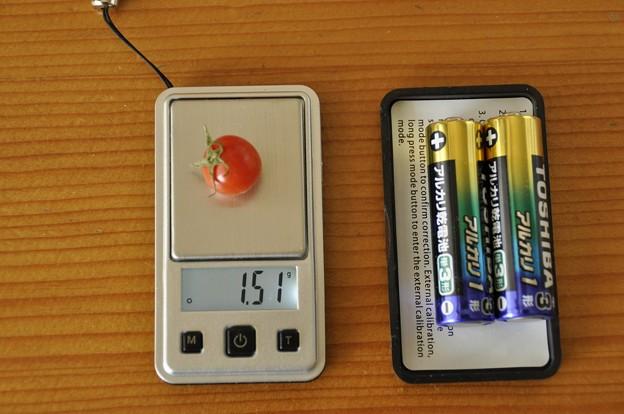 ベランダで採れた超ミニトマト1.51g