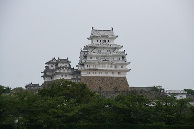 Photos: 姫路城(兵庫県姫路市)?