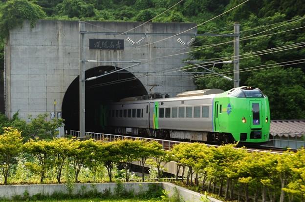 青函トンネルから颯爽と現れたスーパー白鳥