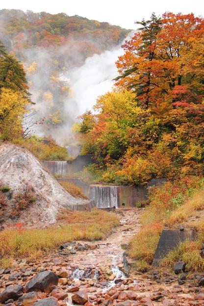 Photos: 葛根田渓谷~滝ノ上温泉付近の紅葉・5