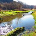 小川のある風景3
