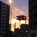 Photos: ♪  (・o・)  #横浜