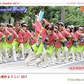 写真: ODORIKOえん_01 - 第8回 浦和よさこい2011