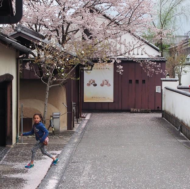 Photos: ウキウキ