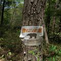 裏磐梯-06388