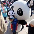 旅まつり名古屋 2015 No - 055:パンダが多くいるのをPRする、和歌山県のキャラ「わかぱん」