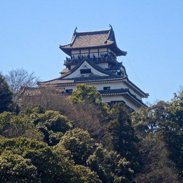 写真: 木曽川沿いから見上げた犬山城 - 2