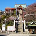 写真: 犬山成田山(2015年3月)No - 06:本堂まで続く急な階段