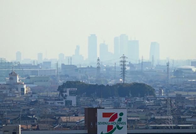写真: 犬山成田山(2015年3月)No - 36:本堂前から見た景色(名駅ビル群)