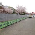 写真: 春の東山動植物園 No - 044:クマ舎前が工事中(2015/4/4)