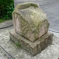 写真: 春の東山動植物園 No - 112:南米古代遺跡の…石?