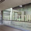 Photos: 春の東山動植物園 No - 129:古びたアフリカゾウ舎の内部