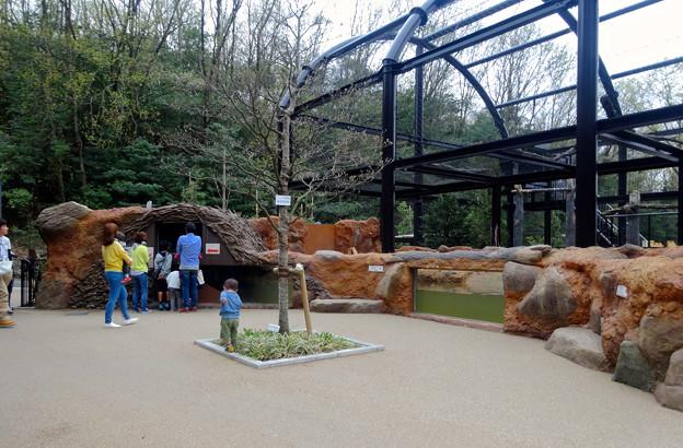 春の東山動植物園 No - 167:新しいビーバー舎とハクトウワシ舎