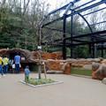 写真: 春の東山動植物園 No - 167:新しいビーバー舎とハクトウワシ舎
