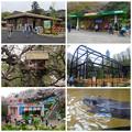写真: 東山動植物園:施設のリニューアル、他 - 1