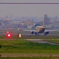 写真: エアフロントオアシス(小牧市):県営名古屋空港から飛び立つ、黄色のFDA機 - 6
