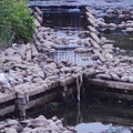 写真: 新木津用水の土手(?)部分がむき出しに… - 3