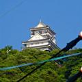 写真: 金華山の麓から見上げた岐阜城 - 3