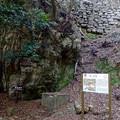 写真: 岐阜公園 No - 12:戦国時代の石垣と井戸跡