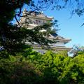 写真: 岐阜城 No - 9
