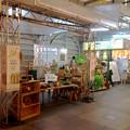 写真: ANNEXビル地下入口前に、春日井サボテンのお店がオープン - 2
