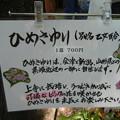 Photos: ひめさゆり (2)