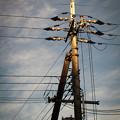 夕方の電柱