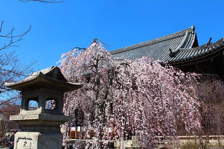 立本寺(りゅうほんじ)