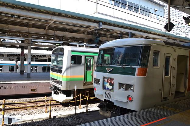 E231系1000番台+185系0番台 [東海道線 東京駅]
