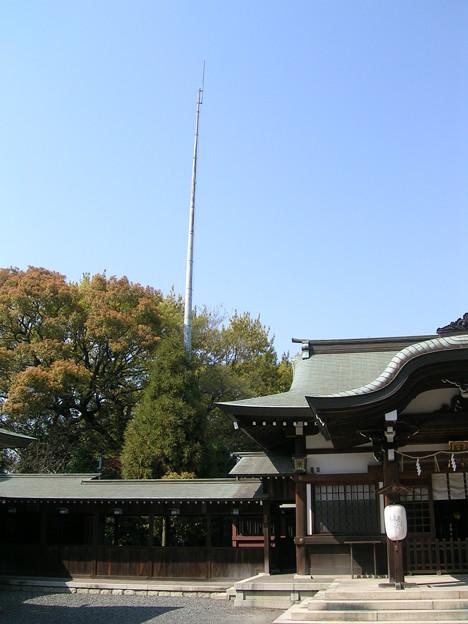 氷上姉子神社2 現代の御柱