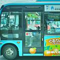 写真: SDIM0580