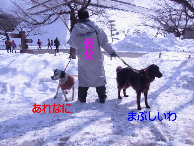 Photos: 02月22日1