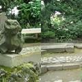 写真: 小石川後楽園3