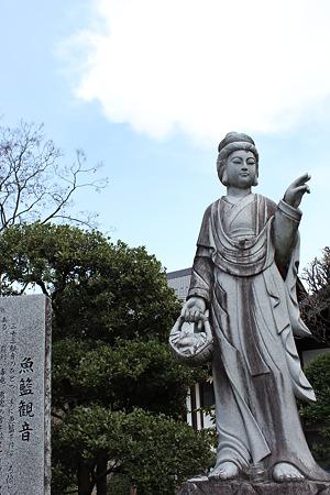 飯田の寺の桜2