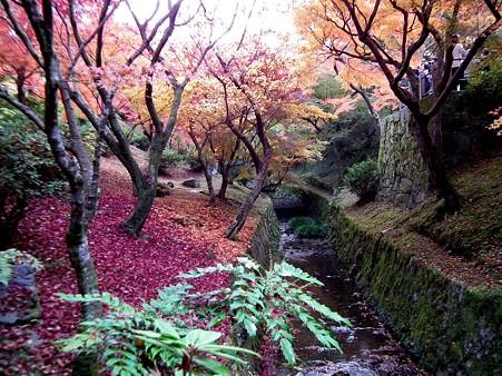 京都2 077