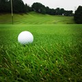 Photos: 月曜日はゴルフでしたf^_^;