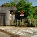 写真: 高島散歩#33