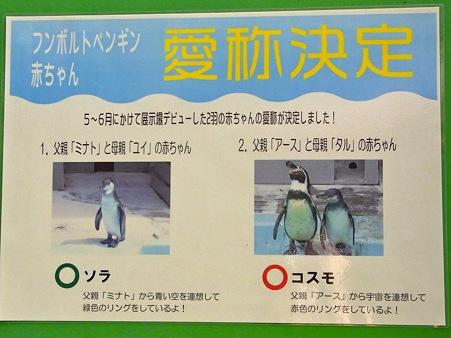 20111017 野毛山 ソラ&コスモ01