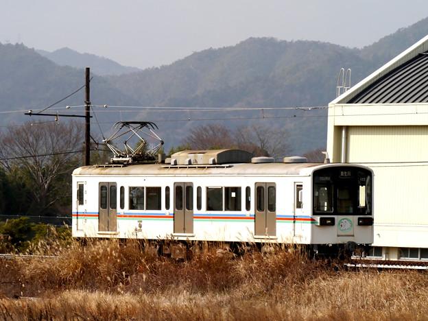 キメラ電車